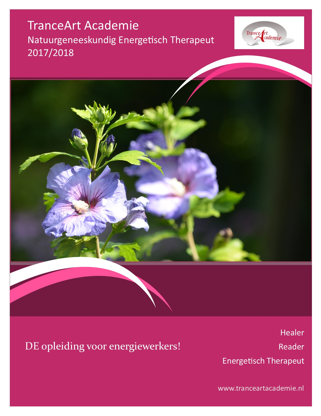 download de brochure voor Natuurgeneeskundig Energetisch Therapeut